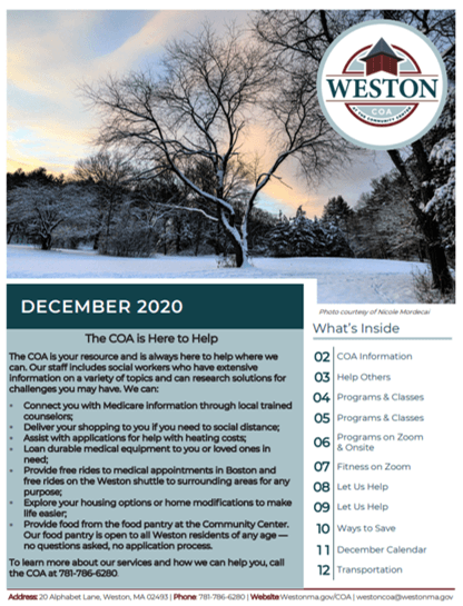 newsletter cover of snowy tree